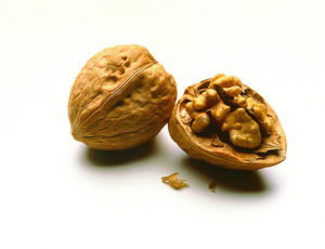 23495344445_cb01041aea_walnuts